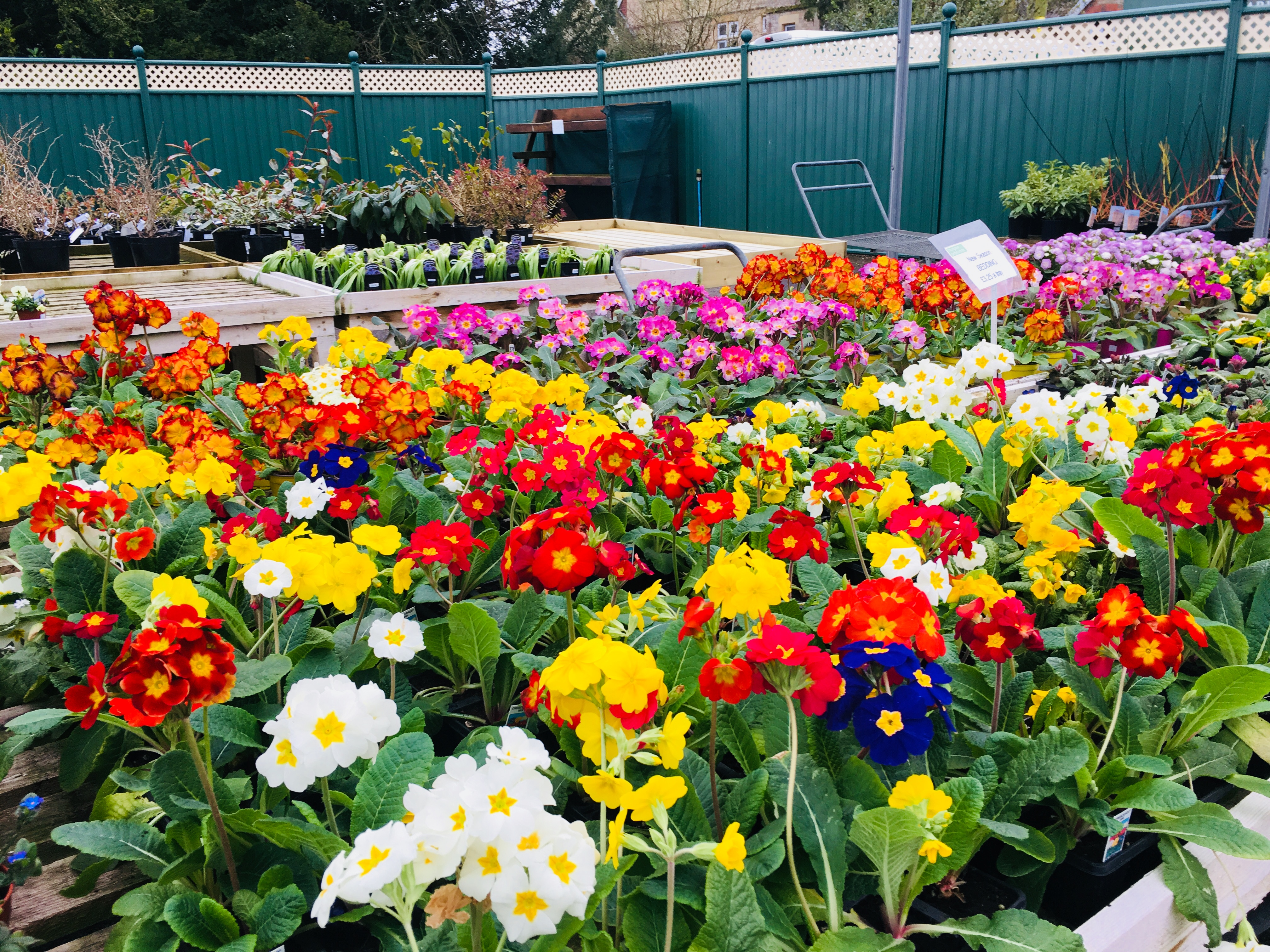 walled garden special offers