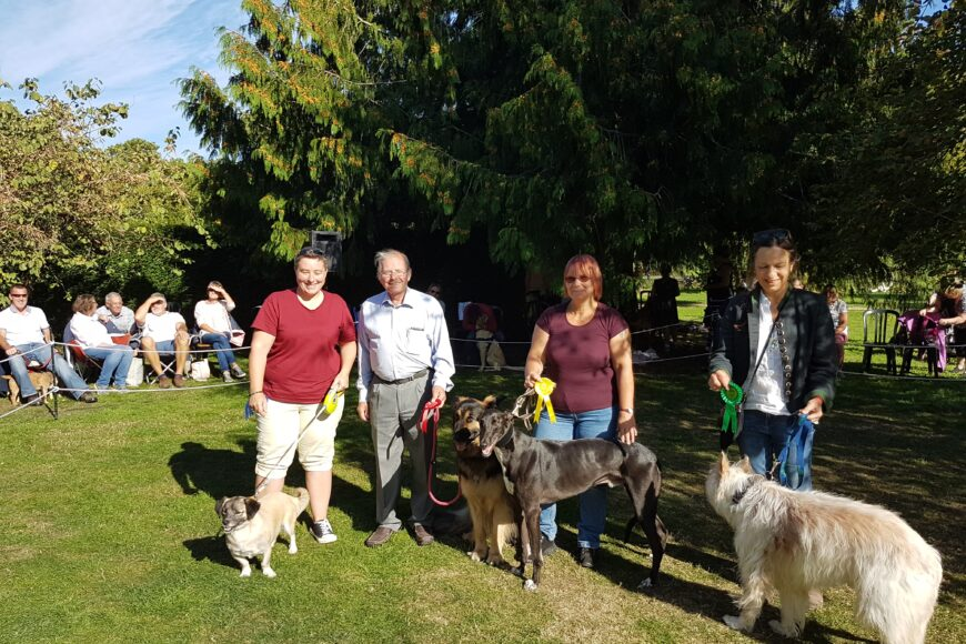 Family Fun Day & Dog Show in aid of Positive Steps Charity