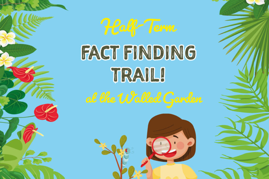 Fact Finding Trail